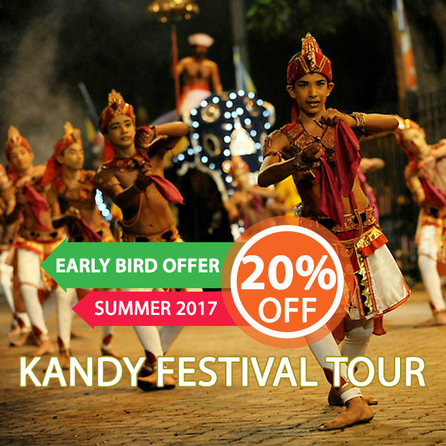 View most popular tour in sri lanka - Early Bird Offer