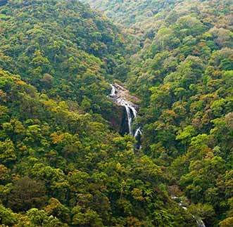 Panoramic view of a beautiful waterfall among lush greenery
