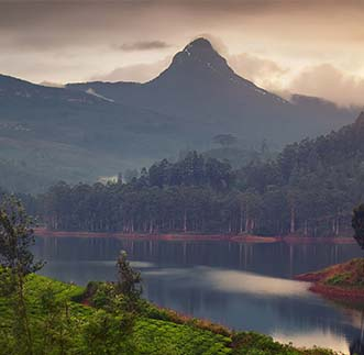 Beautiful view of misty mountains in hill country Sri Lanka