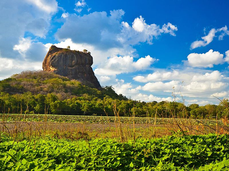 Beautiful Distance view of Sigiriya Rock