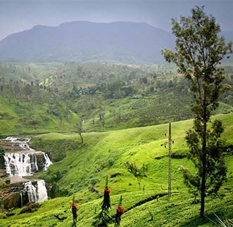 Nuwara Eliya and Overnight Stay at Nuwara Eliya