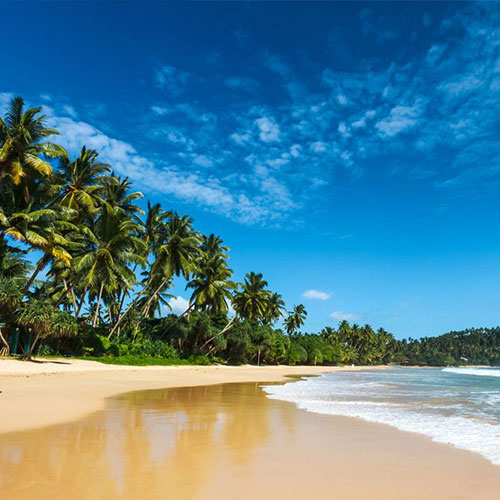 BBC's extensive coverage whips up global appetite for a holiday in Sri Lanka in sri lanka